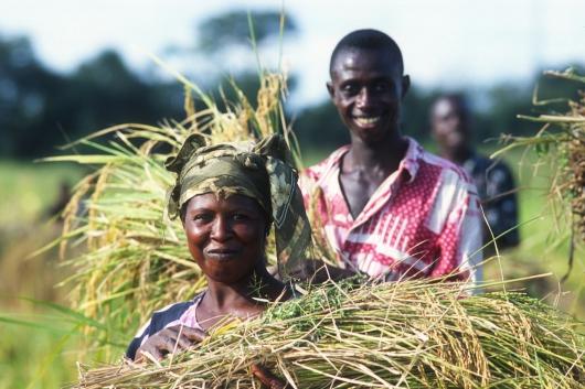 Agriculture familiale