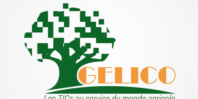 Logo GELICO
